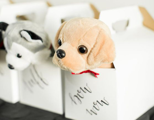 Stuffed Animals In A Decorative Box As Adopt A Pet Birthday Party Favors