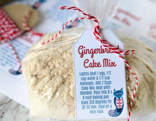 Gingerbread Cake Mix In A Baggie As Birthday Party Favor